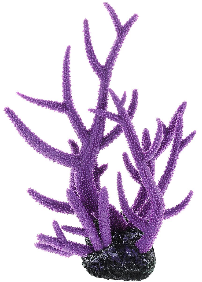 Декорация для аквариума Barbus Коралл, 27 х 24 х 31 смDecor 271Декорация для аквариума Barbus Коралл, выполненная из высококачественного нетоксичного полирезина, станет прекрасным украшением вашего аквариума. Изделие отличается реалистичным исполнением с множеством мелких деталей. Декорация абсолютно безопасна, нейтральна к водному балансу, устойчива к истиранию краски, подходит как для пресноводного, так и для морского аквариума. Благодаря декорациям Barbus вы сможете смоделировать потрясающий пейзаж на дне вашего аквариума или террариума.