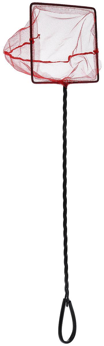 Сачок аквариумный Barbus, с инфракрасной сеткой, с удлиненной ручкой, 15 х 12,5 смAccessory 020Сачок Barbus предназначен для легкого извлечения рыб или остатков корма из аквариума. Изделие выполнено из металла со специальным пластиковым покрытием и оснащено удлиненной ручкой с петлей для подвешивания. Инфракрасная сетка из нейлона позволяет без труда поймать рыбу в сачок, так как основная их масса не воспринимает красный цвет. Такой сачок безопасен для рыб, устойчив к коррозии и долговечен. Размер сачка: 15 х 12,5 см. Длина ручки: 45 см.