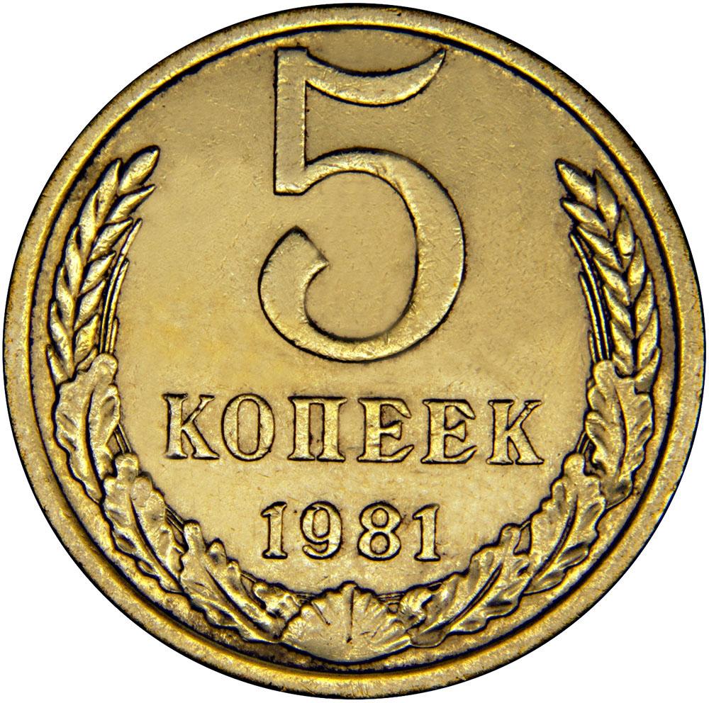 Монета номиналом 5 копеек. Сохранность VF. СССР, 1981 год