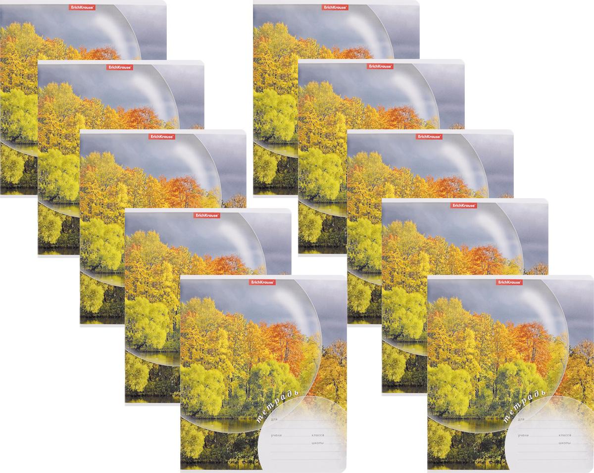 Erich Krause Набор тетрадей Магия природы Осень 24 листа в линейку 10 шт