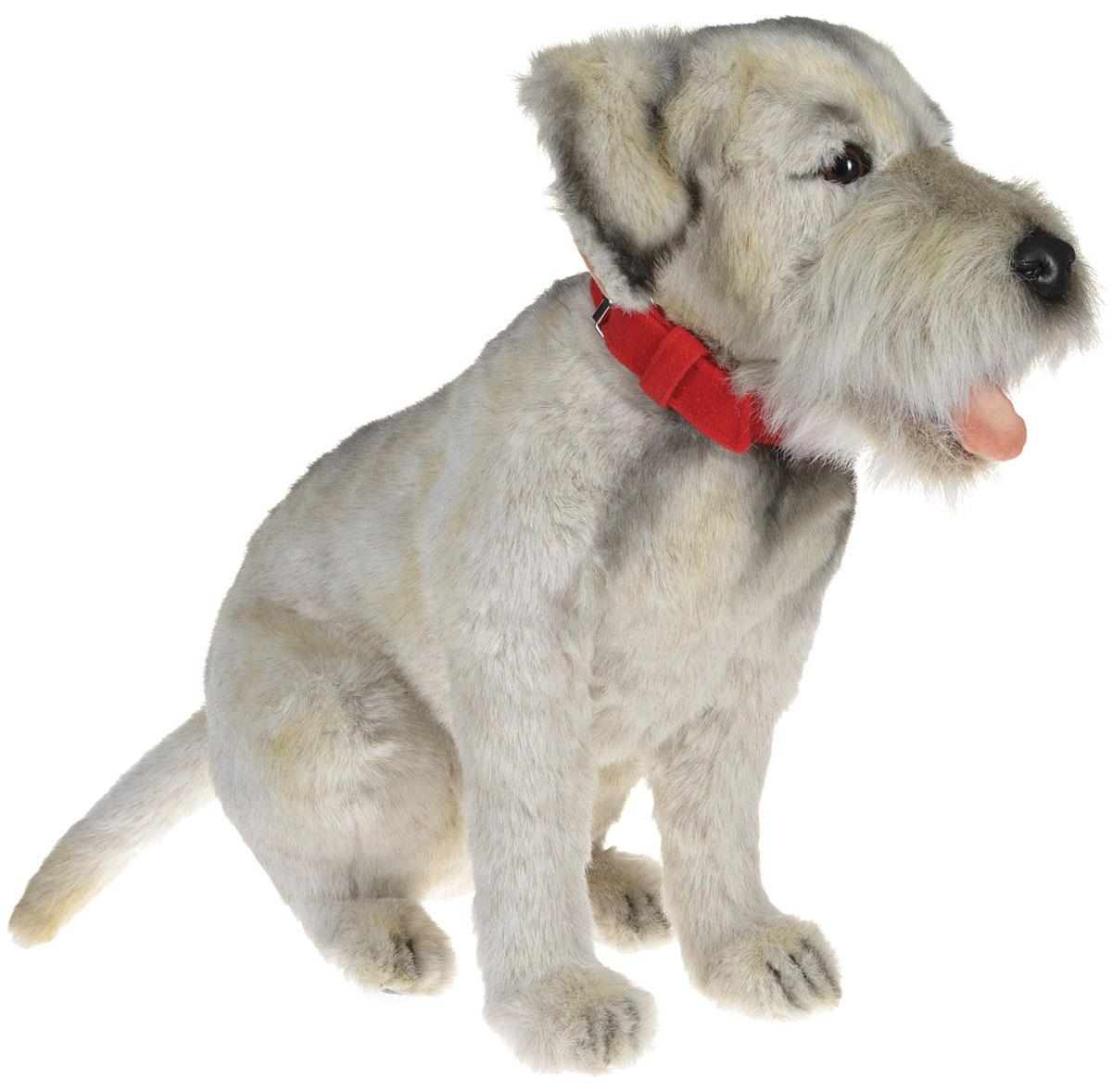 Hansa Toys Мягкая игрушка Бордер-терьер 44 см4568Мягкая игрушка Hansa Toys Бордер-терьер выполнена в виде охотничьей собаки породы бордер-терьер. Судя по названию, бордер-терьер происходит из пограничных районов Англии и Шотландии (англ. border - граница), где эти небольшие и выносливые собаки использовались для охоты на барсуков и лисиц. При этом они должны были быть достаточно малы, чтобы проникать в норы этих животных, и к тому же иметь достаточно длинные ноги, чтобы не отставать от лошадей. Бордер-терьер должен был, кроме того, иметь такую шерсть, которая защищала бы его от холода, влаги и ран. От него требовалась также определенная резкость, необходимая для охоты на мелких хищных зверей. Поскольку собаки использовались преимущественно в стае, они прекрасно ладят друг с другом. Игрушка изготовлена из искусственного меха с набивкой из полиэфирного волокна и металлическим каркасом. С таким другом можно устроить любую увлекательную сюжетно-ролевую игру. Удивительно мягкая игрушка принесет радость и подарит своему...