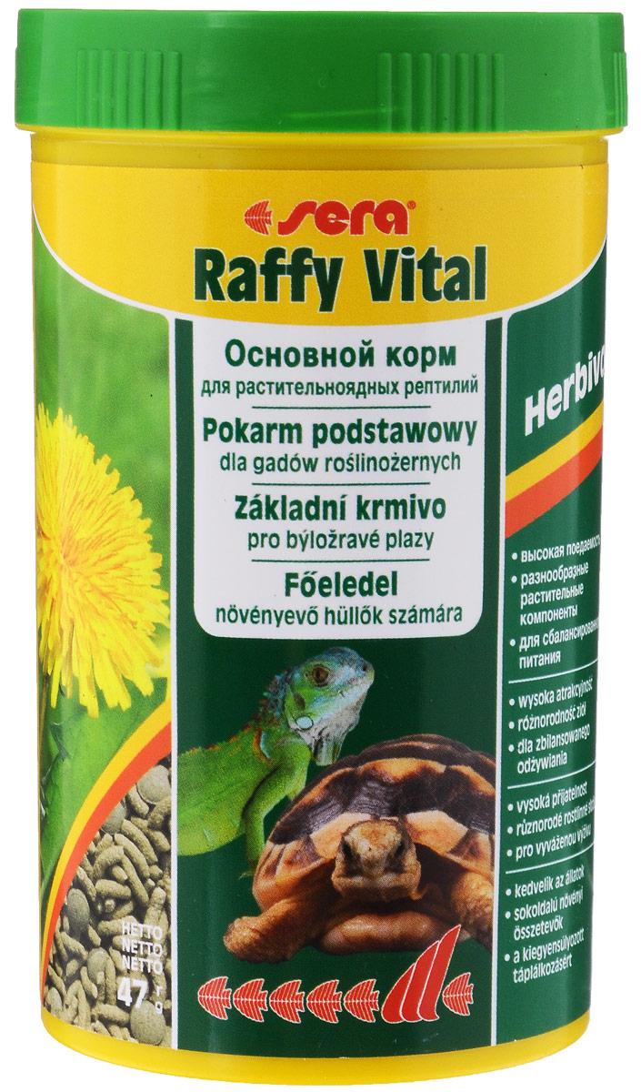 Корм для растительноядных рептилий Sera Raffy Vital, 250 мл16017Sera Raffy Vital - это идеальный основной корм для сухопутных черепах и всех других видов растительноядных рептилий. Вкусная и богатая балластным веществом смесь из кормовых палочек и травяных таблеток оптимально удовлетворяет потребностям животных. Тщательно сбалансированное содержание витаминов и минералов укрепляет устойчивость к болезням и способствует здоровому росту костей и панциря. Аналитический состав: протеин 18,1%, жиры3,4%, клетчатка 9,3%, влажность 4,5%, зольные вещества 8%, кальций 1,5%, фосфор 0,6%, Витамины и провитамины: витамин А 24000 МЕ/кг, витамин D3 1200 МЕ/кг, витамин Е 48 мг/кг, витамин В1 24 мг/кг, витамин В2 72 мг/кг, витамин С 440 мг/кг. Микроэлементы: Fe (E1) 25 мг/кг, Cu (Е4) 1,3 мг/кг, Mn (Е5) 1,3 мг/кг, Zn (Е6) 24,9 мг/кг. Товар сертифицирован.