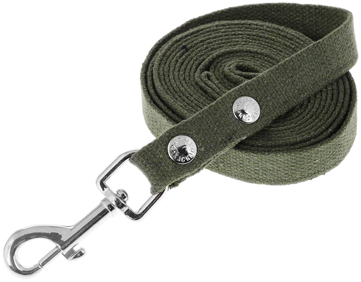 Поводок брезентовый Каскад Классика, для собак, ширина 2 см, длина 3 м. 2120012_зеленый2120012_зеленыйПоводок для собак Каскад Классика, изготовленный из высококачественной брезентовой ткани, снабжен металлическим карабином. Изделие отличается не только исключительной надежностью и удобством, но и привлекательным дизайном. Поводок - необходимый аксессуар для собаки. Ведь в опасных ситуациях именно он способен спасти жизнь вашему любимому питомцу. Иногда нужно ограничивать свободу своего четвероногого друга, чтобы защитить его или себя от неприятностей на прогулке. Длина поводка: 3 м. Ширина поводка: 2 см.