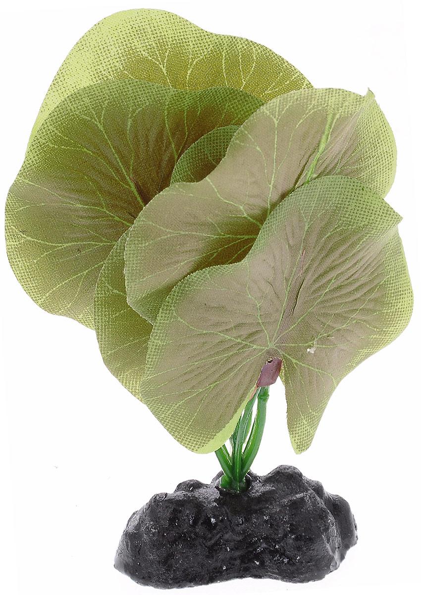 Растение для аквариума Barbus Лотос, шелковое, высота 10 смPlant 053/10Растение для аквариума Barbus Лотос, выполненное из качественного шелка, станет оригинальным украшением вашего аквариума. В воде создается абсолютная имитация живого растения. Можно использовать в любой воде: пресной или морской. Изделие полностью безопасно для обитателей аквариума, не токсично, нейтрально к водному балансу, устойчиво к истиранию краски. Растение Barbus поможет вам смоделировать потрясающий пейзаж на дне вашего аквариума или террариума. Высота растения: 10 см.