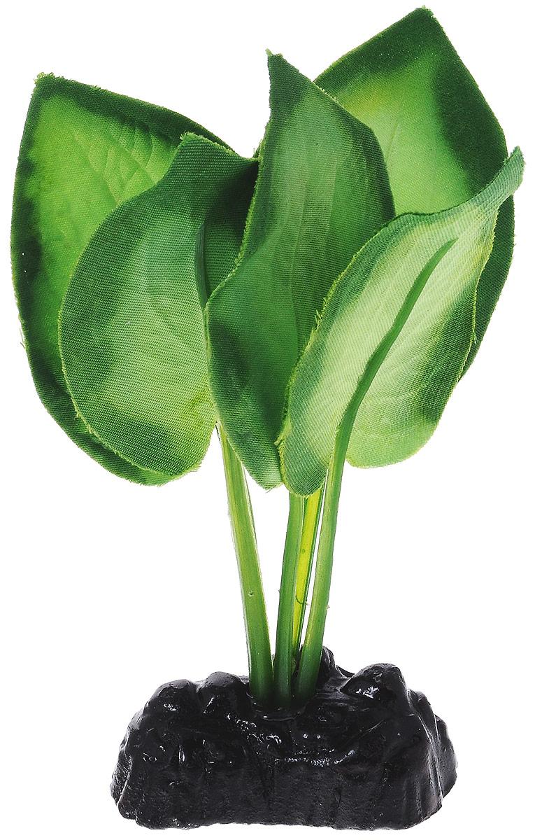 Растение для аквариума Barbus Эхинодорус, шелковое, высота 10 см. Plant 044/10Plant 044/10Растение для аквариума Barbus Эхинодорус, выполненное из качественного шелка, станет оригинальным украшением вашего аквариума. В воде происходит абсолютная имитация живого растения. Можно использовать в любой воде: пресной или морской. Изделие полностью безопасно для обитателей аквариума, не токсично, нейтрально к водному балансу, устойчиво к истиранию краски. Растение Barbus поможет вам смоделировать потрясающий пейзаж на дне вашего аквариума или террариума. Высота растения: 10 см.