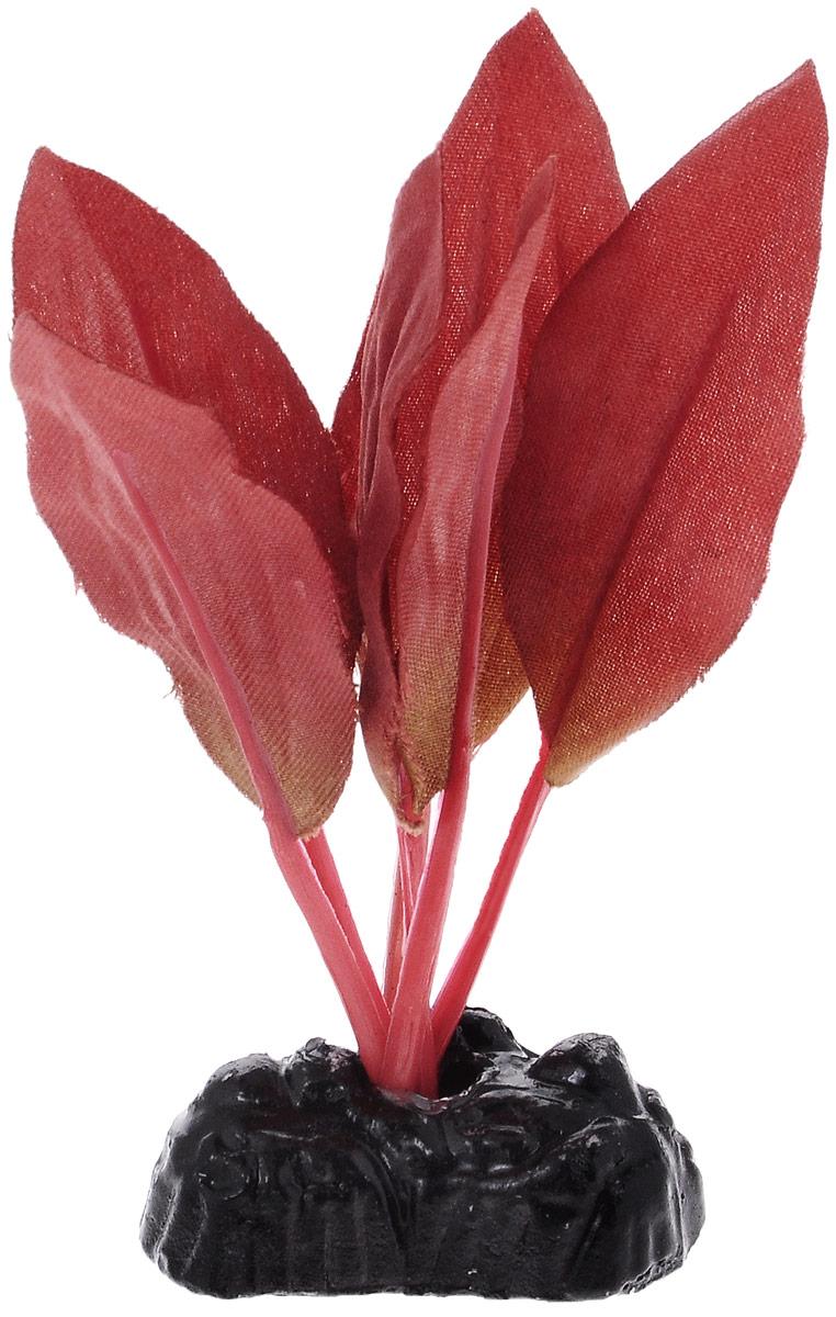 Растение для аквариума Barbus Криптокорина красная, шелковое, высота 10 смPlant 049/10Растение для аквариума Barbus Криптокорина красная, выполненное из качественного шелка, станет оригинальным украшением вашего аквариума. В воде создается абсолютная имитация живого растения. Можно использовать в любой воде: пресной или морской. Изделие полностью безопасно для обитателей аквариума, не токсично, нейтрально к водному балансу, устойчиво к истиранию краски. Растение Barbus поможет вам смоделировать потрясающий пейзаж на дне вашего аквариума или террариума. Высота растения: 10 см.