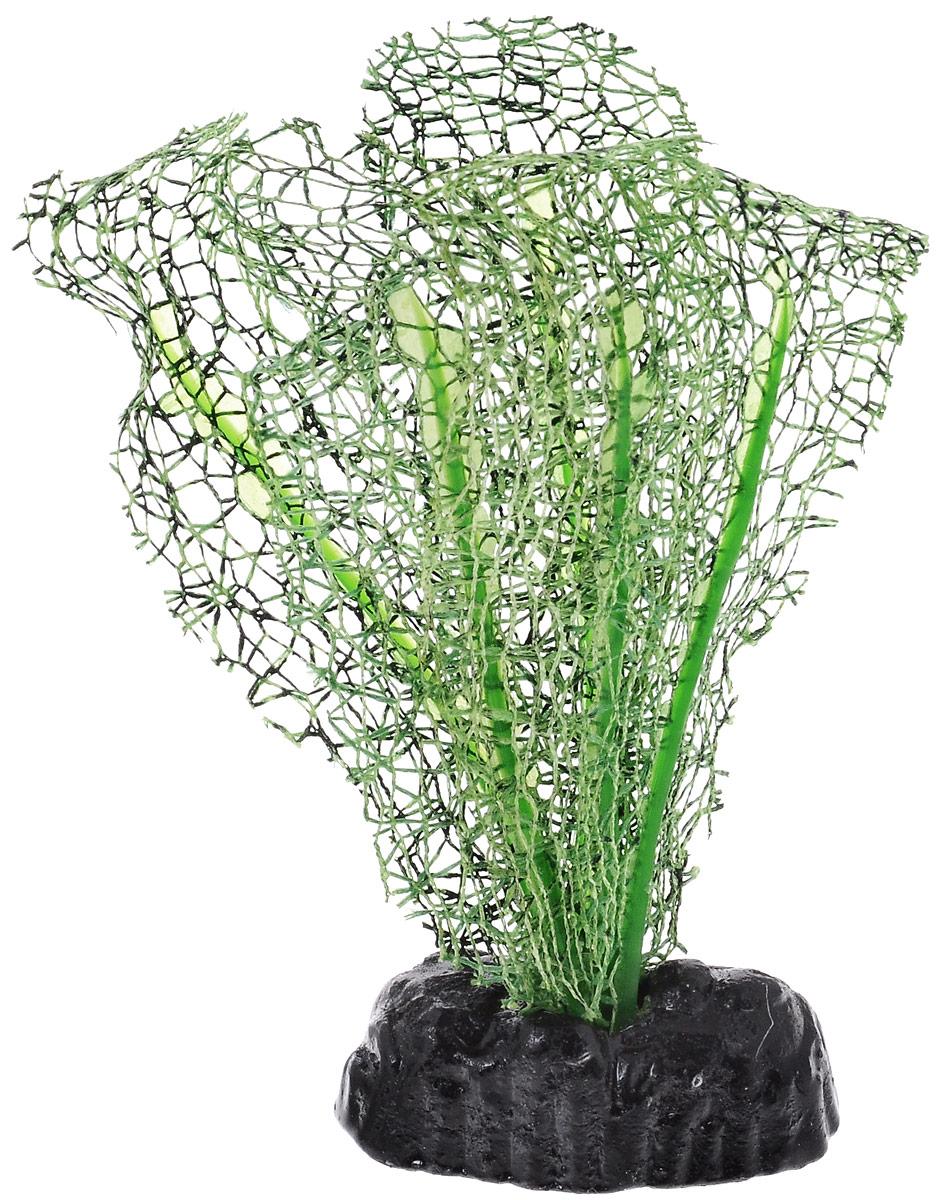 Растение для аквариума Barbus Апоногетон натанс, шелковое, цвет: зеленый, высота 10 смPlant 039/10Растение для аквариума Barbus Апоногетон натанс, выполненное из качественного шелка, станет оригинальным украшением вашего аквариума. В воде создается абсолютная имитация живого растения. Можно использовать в любой воде: пресной или морской. Изделие полностью безопасно для обитателей аквариума, не токсично, нейтрально к водному балансу, устойчиво к истиранию краски. Растение Barbus поможет вам смоделировать потрясающий пейзаж на дне вашего аквариума или террариума. Высота растения: 10 см.