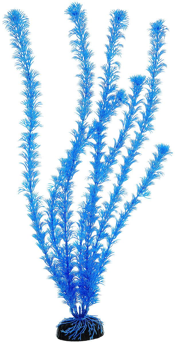 Растение для аквариума Barbus Кабомба, пластиковое, цвет: синий, высота 50 смPlant 020/50Растение Barbus Кабомба, выполненное из высококачественного нетоксичного пластика, станет прекрасным украшением вашего аквариума. Пластиковое растение идеально подходит для дизайна всех видов аквариумов. В воде происходит абсолютная имитация живых растений. Изделие не требует дополнительного ухода. Оно абсолютно безопасно, нейтрально к водному балансу, устойчиво к истиранию краски, подходит как для пресноводного, так и для морского аквариума. Растение для аквариума Barbus Кабомба поможет вам смоделировать потрясающий пейзаж на дне вашего аквариума. Высота растения: 50 см.