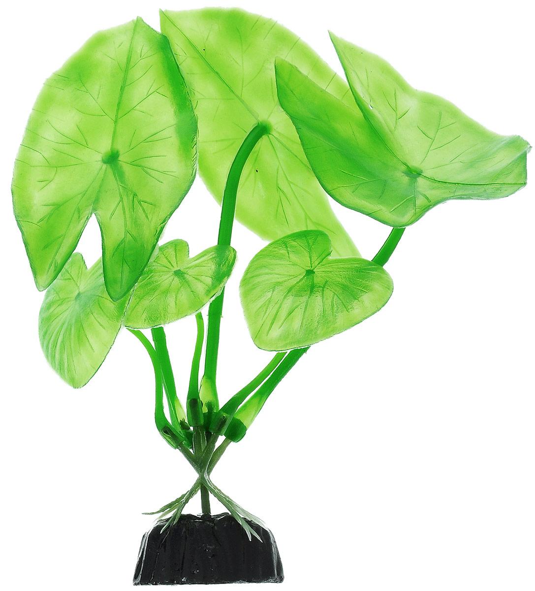 Растение для аквариума Barbus Нимфея, пластиковое, высота 10 смPlant 003/10Растение для аквариума Barbus Нимфея, выполненное из качественного пластика, станет прекрасным украшением вашего аквариума. Пластиковое растение идеально подходит для дизайна всех видов аквариумов. Оно абсолютно безопасно, нейтрально к водному балансу, устойчиво к истиранию краски, подходит как для пресноводного, так и для морского аквариума. Растение для аквариума Barbus поможет вам смоделировать потрясающий пейзаж на дне вашего аквариума или террариума. Высота растения: 10 см.