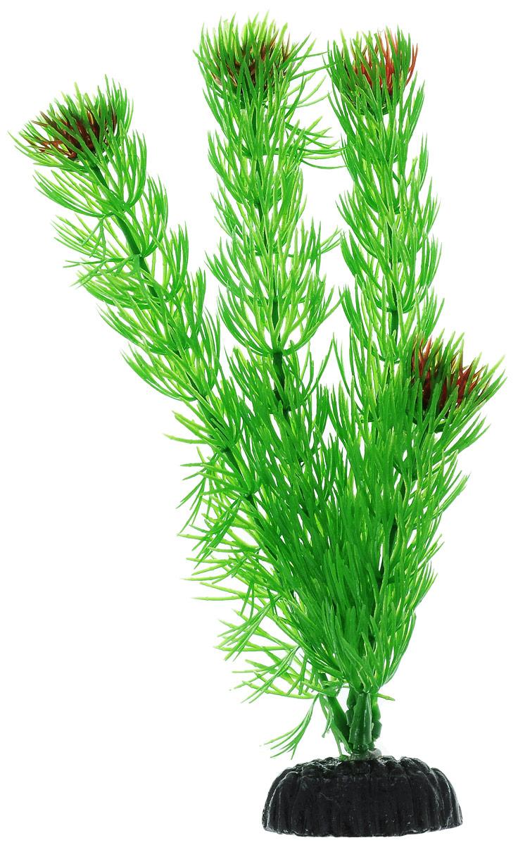 Растение для аквариума Barbus Амбулия, пластиковое, высота 20 смPlant 002/20Растение для аквариума Barbus Амбулия, выполненное из качественного пластика, станет прекрасным украшением вашего аквариума. Пластиковое растение идеально подходит для дизайна всех видов аквариумов. Оно абсолютно безопасно, нейтрально к водному балансу, устойчиво к истиранию краски, подходит как для пресноводного, так и для морского аквариума. Растение для аквариума Barbus Амбулия поможет вам смоделировать потрясающий пейзаж на дне вашего аквариума или террариума. Высота растения: 20 см.