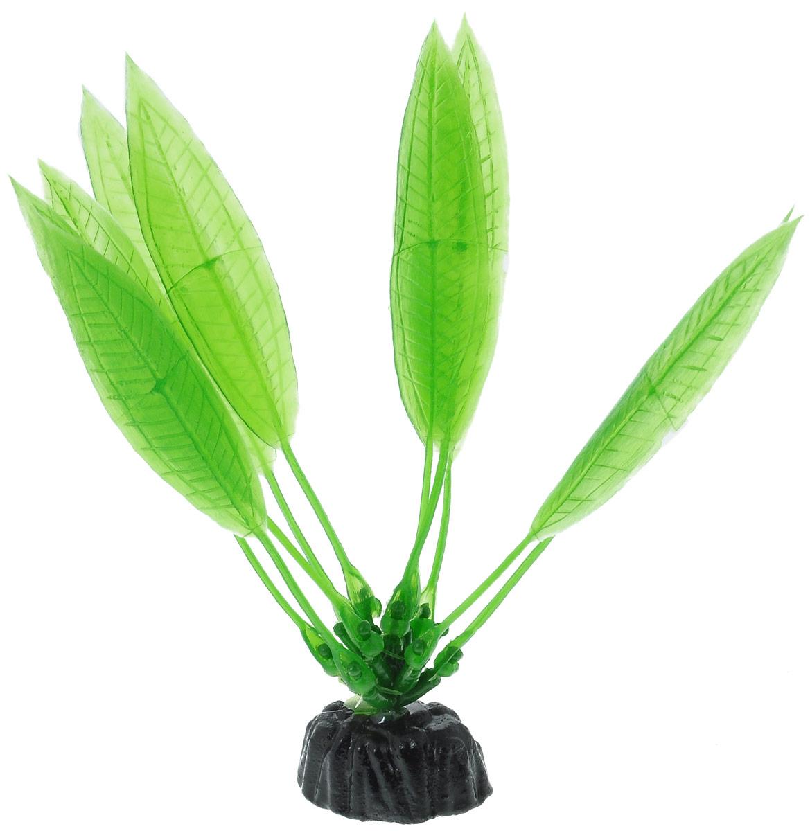 Растение для аквариума Barbus Эхинодорус амазонский, пластиковое, высота 10 смPlant 009/10Растение для аквариума Barbus Эхинодорус амазонский, выполненное из качественного пластика, станет оригинальным украшением вашего аквариума. Пластиковое растение идеально подходит для дизайна всех видов аквариумов. Оно абсолютно безопасно, не токсично, нейтрально к водному балансу, устойчиво к истиранию краски, подходит как для пресноводного, так и для морского аквариума. Растение для аквариума Barbus поможет вам смоделировать потрясающий пейзаж на дне вашего аквариума или террариума. Высота растения: 10 см.