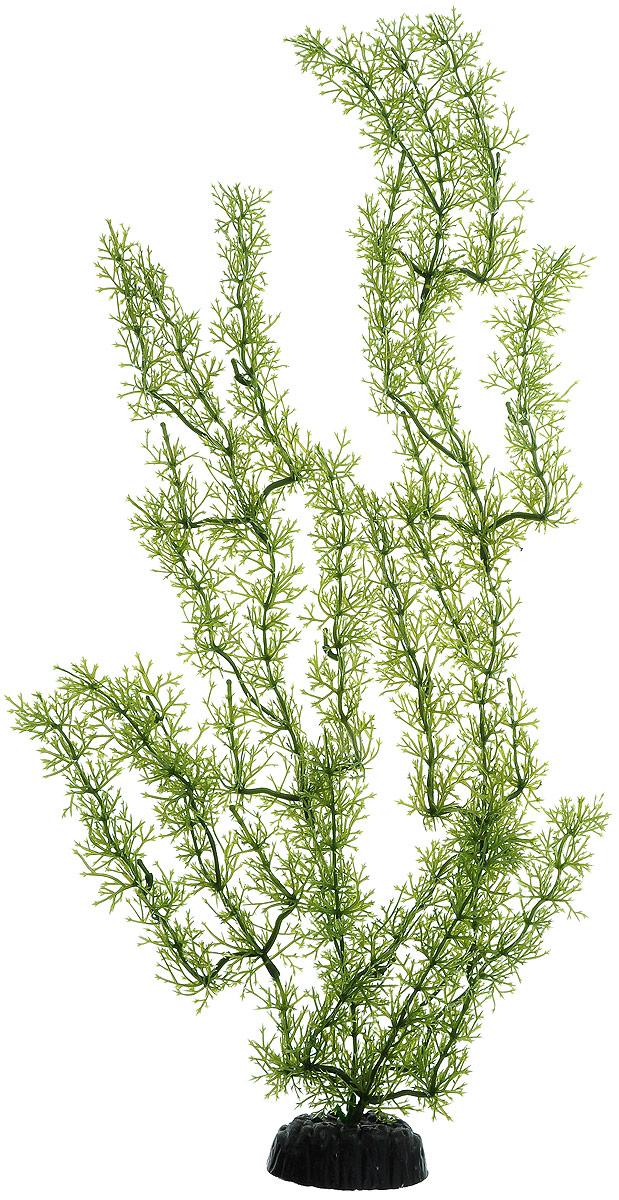 Растение для аквариума Barbus Яванский мох, пластиковое, высота 50 смPlant 024/50Растение для аквариума Barbus Яванский мох, выполненное из качественного пластика, станет оригинальным украшением вашего аквариума. Пластиковое растение идеально подходит для дизайна всех видов аквариумов. Оно абсолютно безопасно, нейтрально к водному балансу, устойчиво к истиранию краски, подходит как для пресноводного, так и для морского аквариума. Растение для аквариума Barbus Яванский мох поможет вам смоделировать потрясающий пейзаж на дне вашего аквариума или террариума. Высота растения: 50 см.