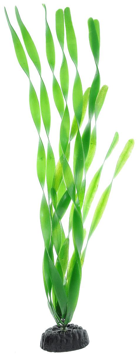 Растение для аквариума Barbus Валлиснерия широколистная, пластиковое, высота 50 смPlant 005/50Растение для аквариума Barbus Валлиснерия широколистная, выполненное из качественного пластика, станет оригинальным украшением вашего аквариума. Пластиковое растение идеально подходит для дизайна всех видов аквариумов. Оно абсолютно безопасно, нейтрально к водному балансу, устойчиво к истиранию краски, подходит как для пресноводного, так и для морского аквариума. Растение для аквариума Barbus поможет вам смоделировать потрясающий пейзаж на дне вашего аквариума или террариума. Высота растения: 50 см.