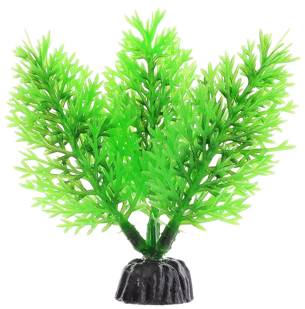 Растение для аквариума Barbus Роголистник, пластиковое, цвет: зеленый, высота 10 смPlant 015/10Растение для аквариума Barbus Роголистник, выполненное из качественного пластика, станет прекрасным украшением вашего аквариума. Пластиковое растение идеально подходит для дизайна всех видов аквариумов. Оно абсолютно безопасно, нейтрально к водному балансу, устойчиво к истиранию краски, подходит как для пресноводного, так и для морского аквариума. Растение для аквариума Barbus поможет вам смоделировать потрясающий пейзаж на дне вашего аквариума или террариума. Высота растения: 10 см.
