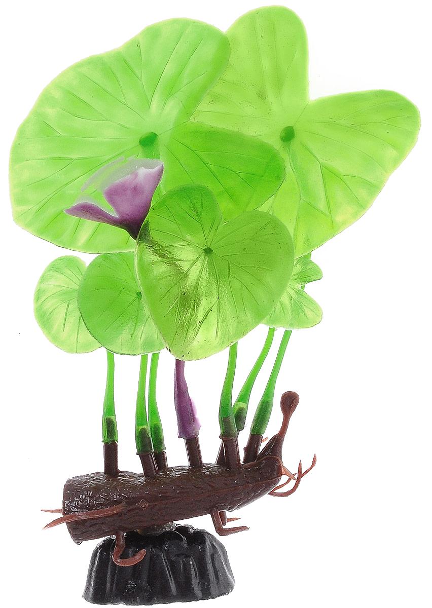 Растение для аквариума Barbus Лилия зеленая с цветком, пластиковое, высота 10 смPlant 013/10Растение для аквариума Barbus Лилия зеленая с цветком, выполненное из качественного пластика, станет оригинальным украшением вашего аквариума. Пластиковое растение идеально подходит для дизайна всех видов аквариумов. Оно абсолютно безопасно, нейтрально к водному балансу, устойчиво к истиранию краски, подходит как для пресноводного, так и для морского аквариума. Растение для аквариума Barbus поможет вам смоделировать потрясающий пейзаж на дне вашего аквариума или террариума. Высота растения: 10 см.