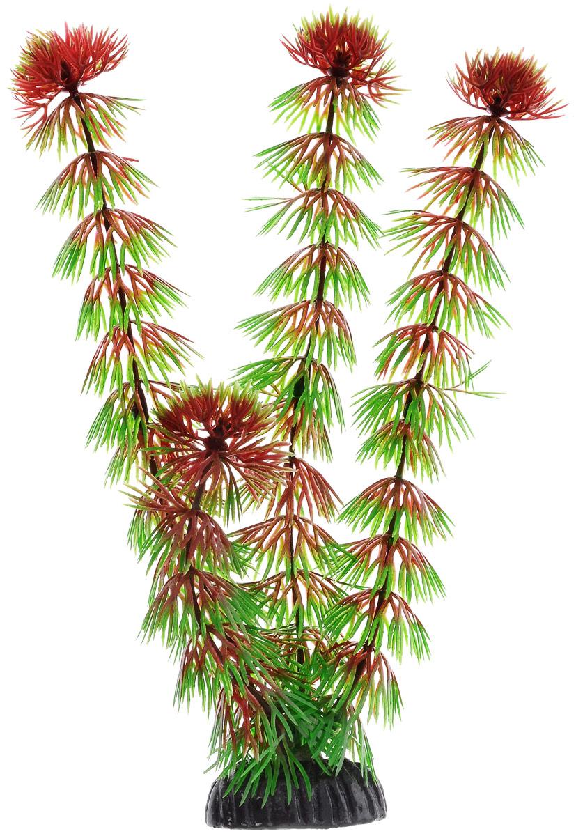 Растение для аквариума Barbus Кабомба красная, пластиковое, высота 20 смPlant 033/20Растение для аквариума Barbus Кабомба красная, выполненное из качественного пластика, станет оригинальным украшением вашего аквариума. Пластиковое растение идеально подходит для дизайна всех видов аквариумов. Оно абсолютно безопасно, нейтрально к водному балансу, устойчиво к истиранию краски, подходит как для пресноводного, так и для морского аквариума. Растение для аквариума Barbus поможет вам смоделировать потрясающий пейзаж на дне вашего аквариума или террариума. Высота растения: 20 см.