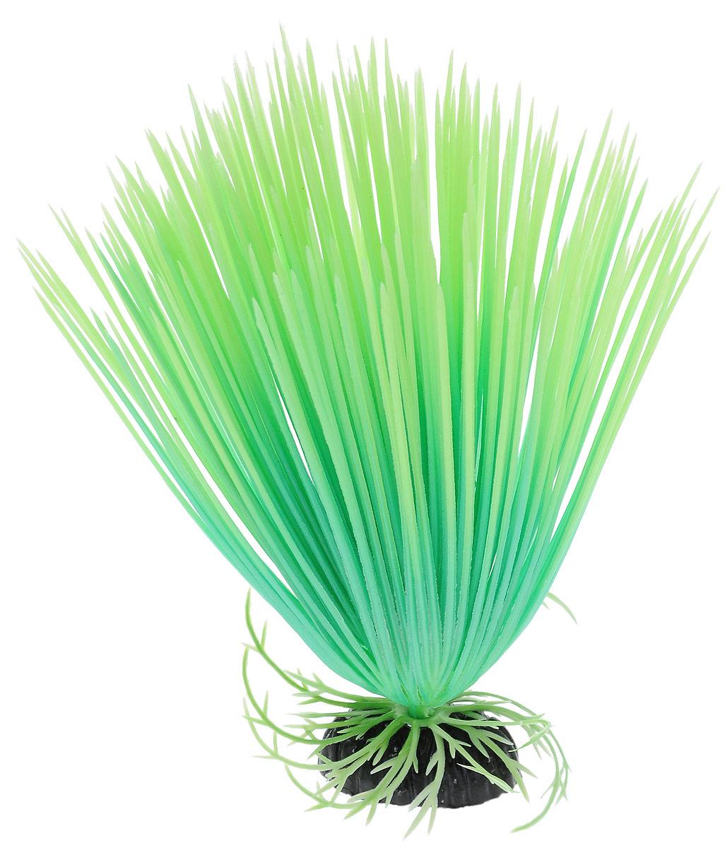 Растение для аквариума Barbus Акорус, пластиковое, светящееся, высота 20 смPlant 056 DARK/20Растение Barbus Акорус выполнено из высококачественного нетоксичного пластика. Оно светится в темноте и станет оригинальным и необычным украшением вашего аквариума. Изделие не требует дополнительного ухода Оно абсолютно безопасно, нейтрально к водному балансу, устойчиво к истиранию краски, подходит как для пресноводного, так и для морского аквариума. Растение для аквариума Barbus поможет вам смоделировать потрясающий пейзаж на дне вашего аквариума или террариума. Высота растения: 20 см.