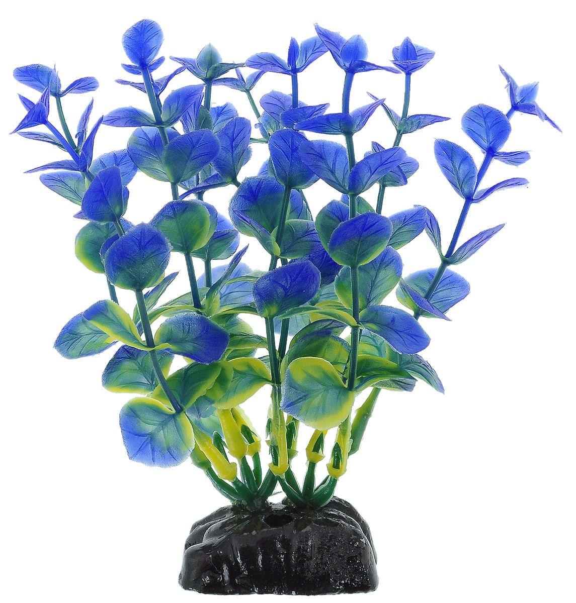 Растение для аквариума Barbus Бакопа, пластиковое, цвет: зеленый, синий, высота 10 смPlant 026/10Растение Barbus Бакопа, выполненное из высококачественного нетоксичного пластика, станет прекрасным украшением вашего аквариума. Пластиковое растение идеально подходит для дизайна всех видов аквариумов. В воде происходит абсолютная имитация живых растений. Изделие не требует дополнительного ухода. Оно абсолютно безопасно, нейтрально к водному балансу, устойчиво к истиранию краски, подходит как для пресноводного, так и для морского аквариума. Растение для аквариума Barbus Бакопа поможет вам смоделировать потрясающий пейзаж на дне вашего аквариума. Высота растения: 10 см.