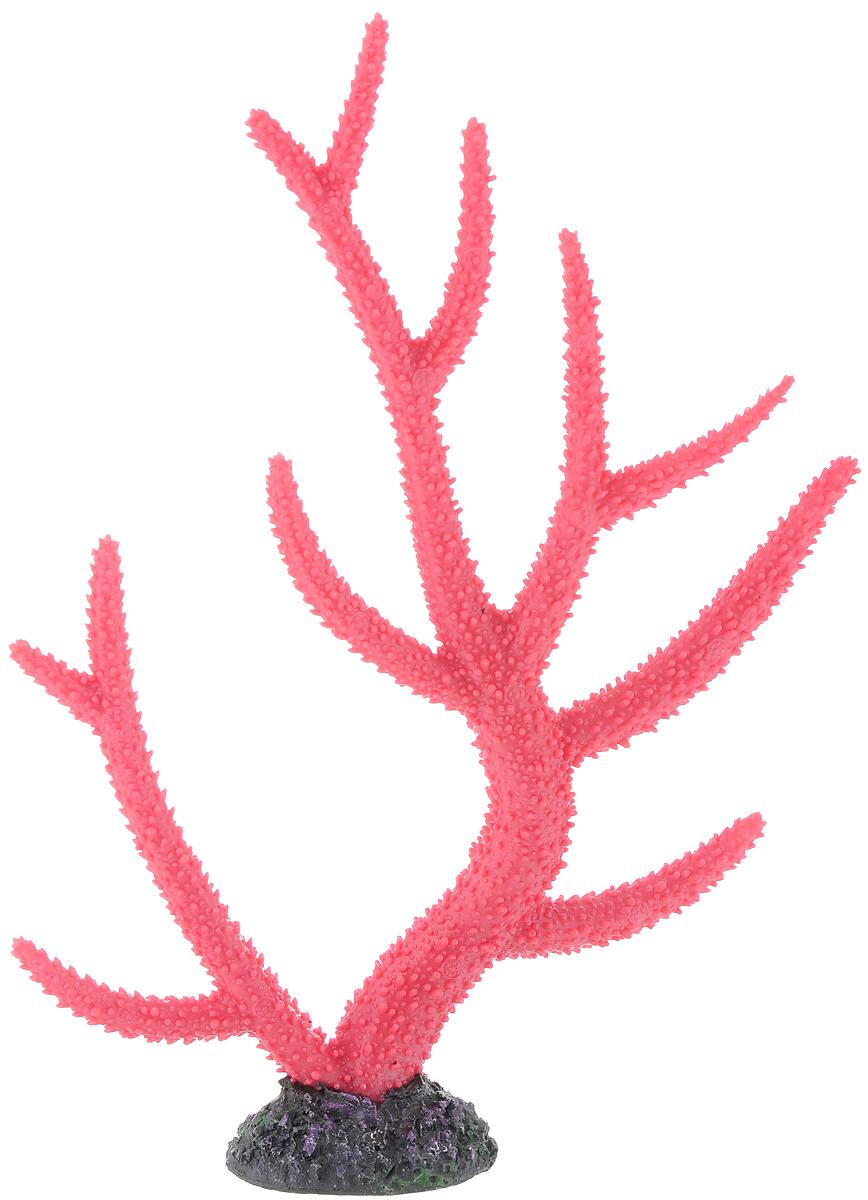 Декорация для аквариума Barbus Коралл, цвет: темно-розовый, 26 х 6,4 х 33,5 смDecor 259Декорация для аквариума Barbus Коралл, выполненная из высококачественного нетоксичного полирезина, станет прекрасным украшением вашего аквариума. Изделие отличается реалистичным исполнением с множеством мелких деталей. Декорация абсолютно безопасна, нейтральна к водному балансу, устойчива к истиранию краски, подходит как для пресноводного, так и для морского аквариума. Благодаря декорациям Barbus вы сможете смоделировать потрясающий пейзаж на дне вашего аквариума или террариума.