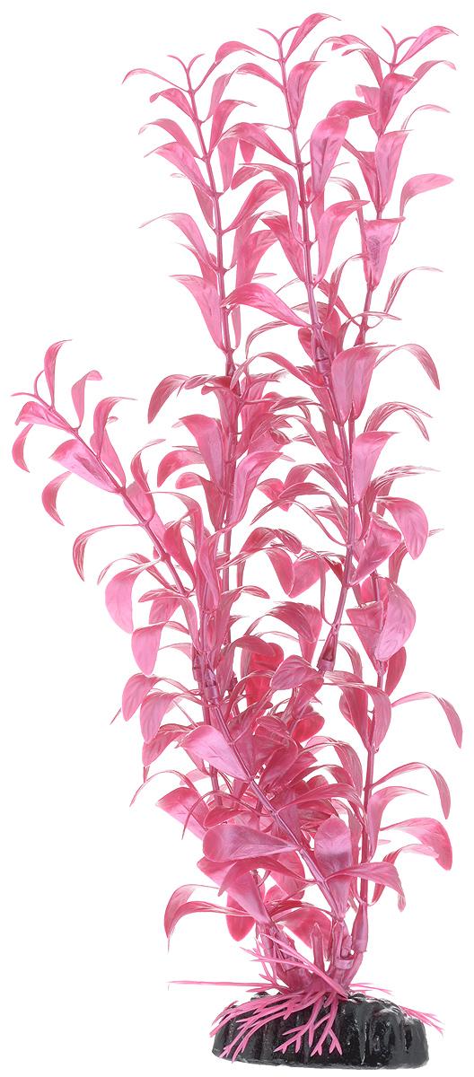 Растение для аквариума Barbus Альтернантера лиловая, пластиковое, высота 30 смPlant 017/30Растение для аквариума Barbus Альтернантера лиловая, выполненное из качественного пластика, станет оригинальным украшением вашего аквариума. Пластиковое растение идеально подходит для дизайна всех видов аквариумов. Оно абсолютно безопасно, нейтрально к водному балансу, устойчиво к истиранию краски, подходит как для пресноводного, так и для морского аквариума. Растение для аквариума Barbus поможет вам смоделировать потрясающий пейзаж на дне вашего аквариума или террариума. Высота растения: 30 см.