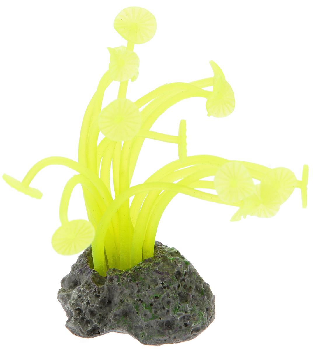 Декорация для аквариума Barbus Коралл, силиконовая, 3,5 х 3 х 8 смDecor 218Декорация для аквариума Barbus Коралл, выполненная из высококачественного силикона, станет оригинальным украшением вашего аквариума. Изделие отличается реалистичным исполнением, в воде создается полная имитация настоящего коралла. Декорация абсолютно безопасна, нейтральна к водному балансу, устойчива к истиранию краски, не токсична, подходит как для пресноводного, так и для морского аквариума. Благодаря декорациям Barbus вы сможете смоделировать потрясающий пейзаж на дне вашего аквариума.
