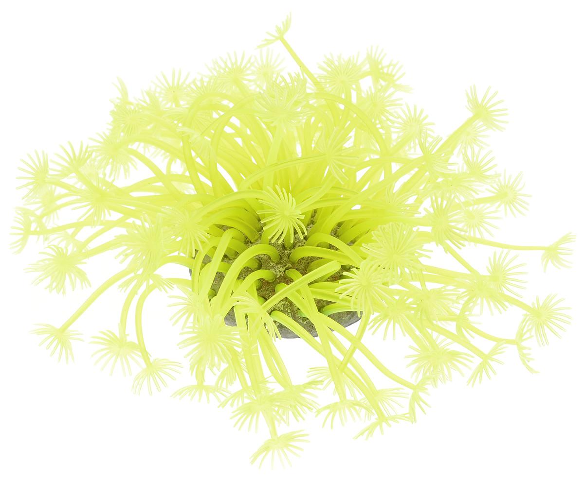 Декорация для аквариума Barbus Коралл, силиконовая, цвет: желтый, 7,5 х 7,5 х 10 смDecor 242Декорация для аквариума Barbus Коралл, выполненная из высококачественного силикона, станет оригинальным украшением вашего аквариума. Изделие отличается реалистичным исполнением, в воде создается полная имитация настоящего коралла. Декорация абсолютно безопасна, нейтральна к водному балансу, устойчива к истиранию краски, не токсична, подходит как для пресноводного, так и для морского аквариума. Благодаря декорациям Barbus вы сможете смоделировать потрясающий пейзаж на дне вашего аквариума.