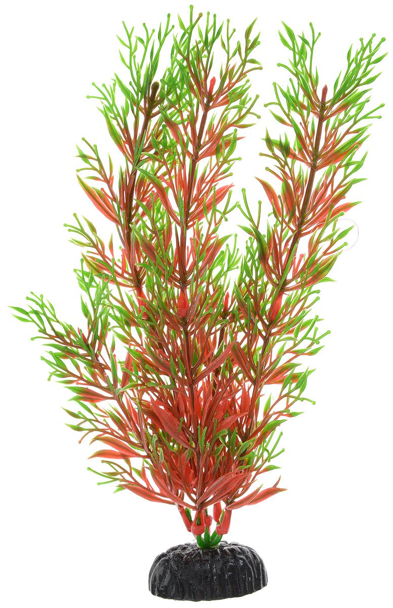 Растение для аквариума Barbus Перистолистник красный, пластиковое, высота 20 смPlant 001/20Растение для аквариума Barbus Перистолистник красный, выполненное из качественного пластика, станет оригинальным украшением вашего аквариума. Пластиковое растение идеально подходит для дизайна всех видов аквариумов. Оно абсолютно безопасно, не токсично, нейтрально к водному балансу, устойчиво к истиранию краски, подходит как для пресноводного, так и для морского аквариума. Растение для аквариума Barbus поможет вам смоделировать потрясающий пейзаж на дне вашего аквариума или террариума. Высота растения: 20 см.