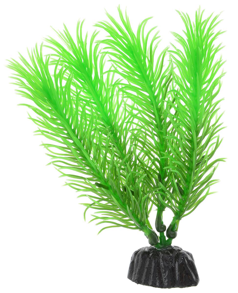 Растение для аквариума Barbus Перистолистник зеленый, пластиковое, высота 10 смPlant 028/10Растение для аквариума Barbus Перистолистник зеленый, выполненное из качественного пластика, станет оригинальным украшением вашего аквариума. Пластиковое растение идеально подходит для дизайна всех видов аквариумов. Оно абсолютно безопасно, не токсично, нейтрально к водному балансу, устойчиво к истиранию краски, подходит как для пресноводного, так и для морского аквариума. Растение для аквариума Barbus поможет вам смоделировать потрясающий пейзаж на дне вашего аквариума или террариума. Высота растения: 10 см.