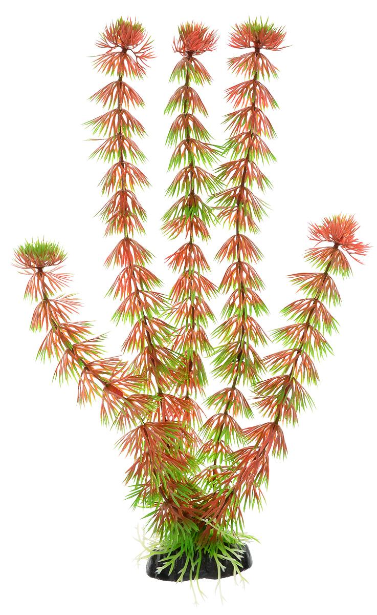 Растение для аквариума Barbus Кабомба красная, пластиковое, высота 30 смPlant 033/30Растение для аквариума Barbus Кабомба красная, выполненное из качественного пластика, станет оригинальным украшением вашего аквариума. Пластиковое растение идеально подходит для дизайна всех видов аквариумов. Оно абсолютно безопасно, нейтрально к водному балансу, устойчиво к истиранию краски, подходит как для пресноводного, так и для морского аквариума. Растение для аквариума Barbus поможет вам смоделировать потрясающий пейзаж на дне вашего аквариума или террариума. Высота растения: 30 см.