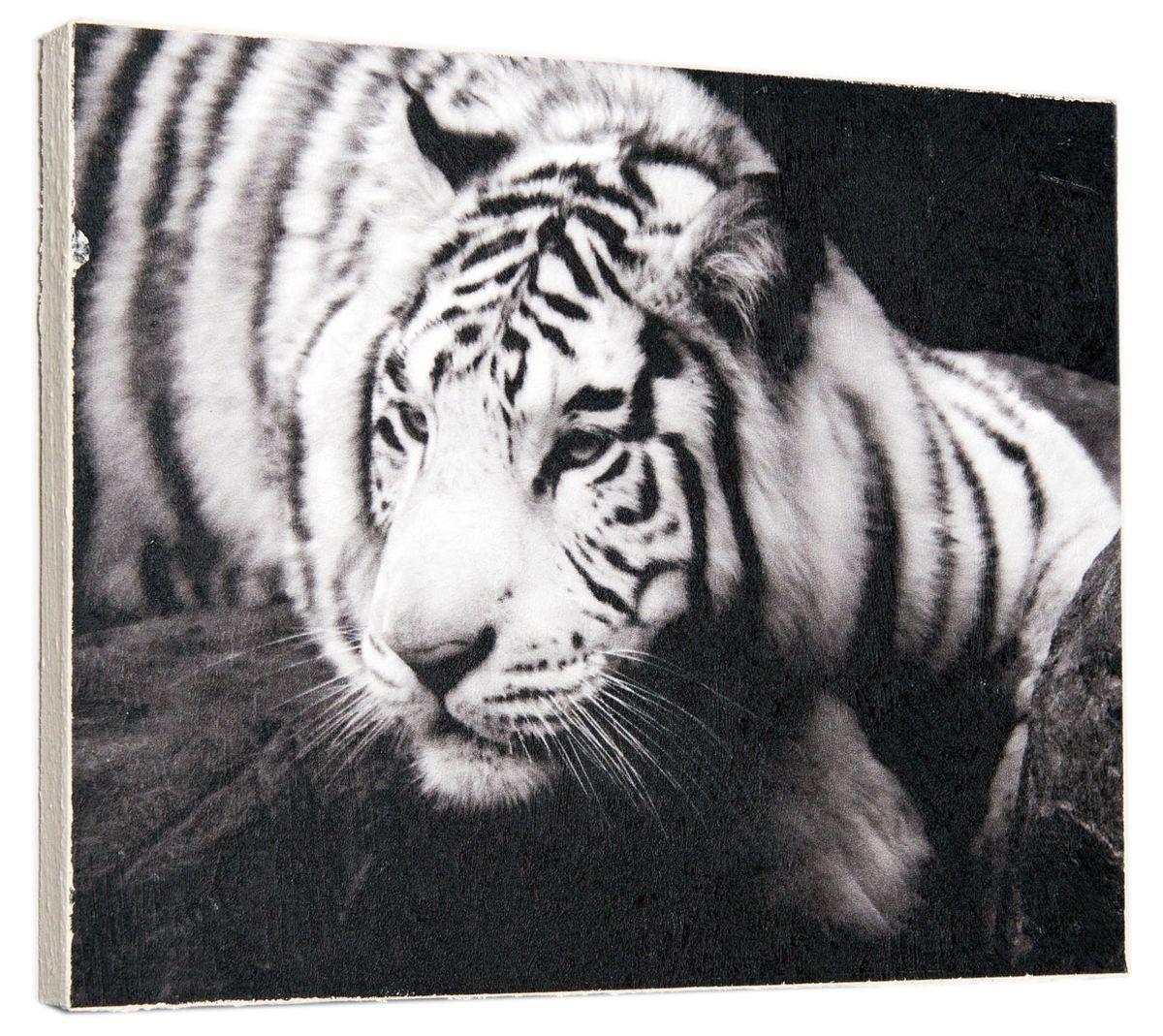 Картина Амурский тигр, 24 х 30 см0145-24-30