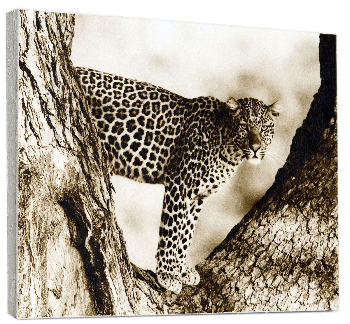 Картина Mister Poster Ягуар на дереве, 30 х 24 см0149-24-30Картина Mister Poster - это высококачественная репродукция на деревянной раме. Лицевая поверхность имитирует штукатурку или натуральный холст, края окрашены вручную специальным декоративным составом. Современные технологии, уникальное оборудование и оригинальные чернила, используемые при изготовлении, делают постер устойчивым к выцветанию, а также гарантируют стойкость к воздействию негативных внешних факторов. Интерьер дома и офиса, в котором находится человек, в значительной степени влияет на его настроение и работоспособность. Правильное оформление интерьера создает благоприятный психологический климат, улучшает настроение и мотивирует. Добавьте «красок» в ваш интерьер и, возможно, в вашу жизнь.