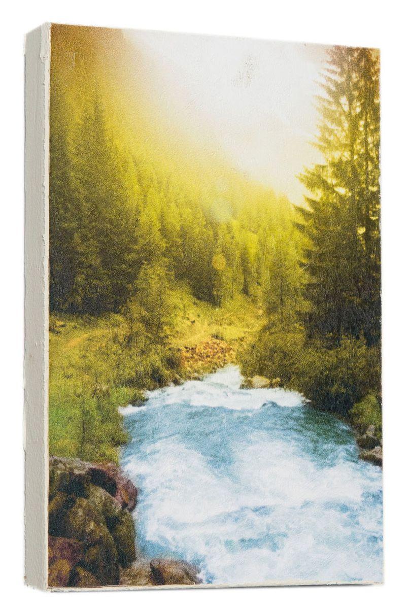 Картина Mister Poster Горная река, 14,5 х 22 см0190-15-22Картина Mister Poster - это высококачественная репродукция на деревянной раме. Лицевая поверхность имитирует штукатурку или натуральный холст, края окрашены вручную специальным декоративным составом. Современные технологии, уникальное оборудование и оригинальные чернила, используемые при изготовлении, делают постер устойчивым к выцветанию, а также гарантируют стойкость к воздействию негативных внешних факторов. Интерьер дома и офиса, в котором находится человек, в значительной степени влияет на его настроение и работоспособность. Правильное оформление интерьера создает благоприятный психологический климат, улучшает настроение и мотивирует. Добавьте «красок» в ваш интерьер и, возможно, в вашу жизнь.