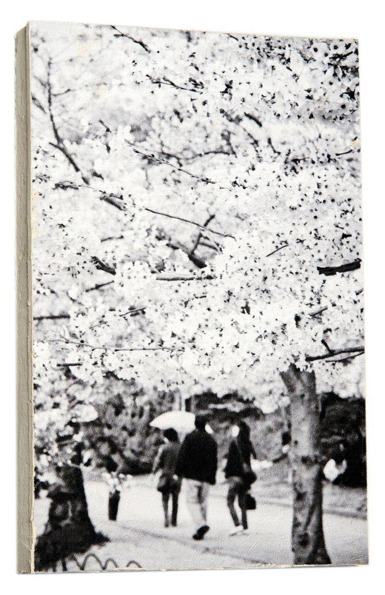 Картина Черно-белое дерево сакуры, 14,5 х 22 см0223-15-22