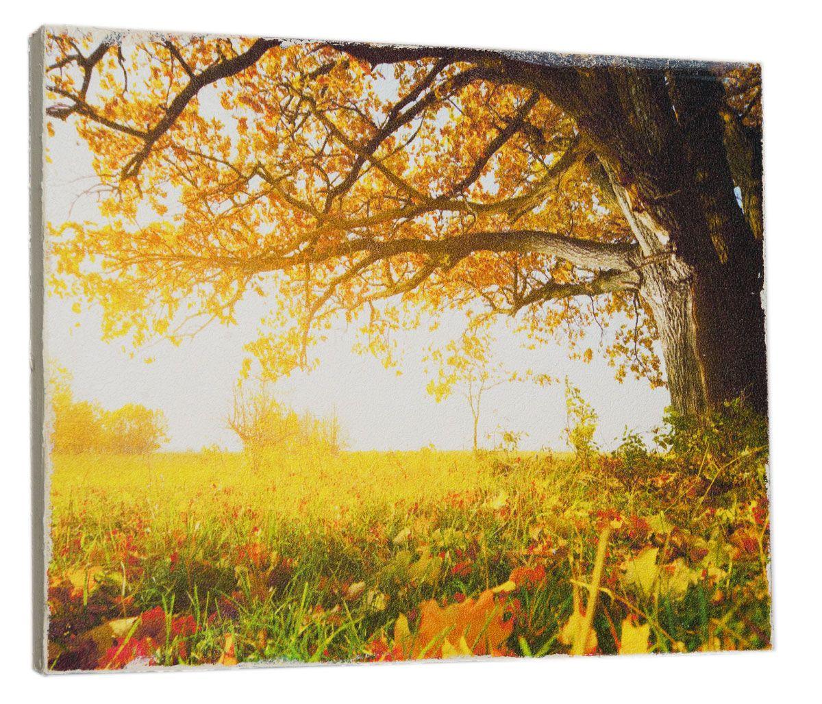 Картина Mister Poster Осеннее опавшее дерево, 32 х 24 см0313-24-32Картина Mister Poster - это высококачественная репродукция на деревянной раме. Лицевая поверхность имитирует штукатурку или натуральный холст, края окрашены вручную специальным декоративным составом. Современные технологии, уникальное оборудование и оригинальные чернила, используемые при изготовлении, делают постер устойчивым к выцветанию, а также гарантируют стойкость к воздействию негативных внешних факторов. Интерьер дома и офиса, в котором находится человек, в значительной степени влияет на его настроение и работоспособность. Правильное оформление интерьера создает благоприятный психологический климат, улучшает настроение и мотивирует. Добавьте «красок» в ваш интерьер и, возможно, в вашу жизнь.