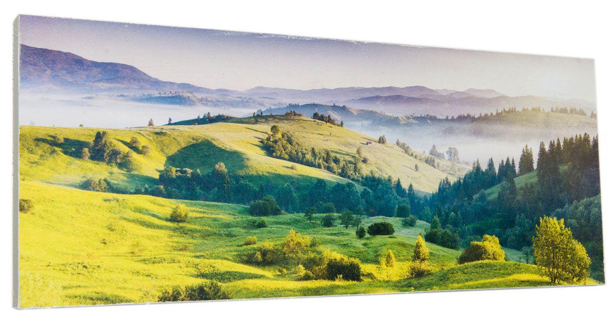 Картина Лесная панорама, 24 х 60 см0332-24-60