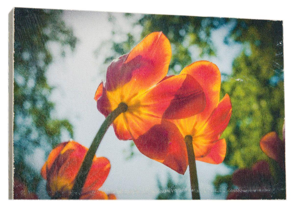Картина Солнечные яркие тюльпаны, 14,5 х 22 см