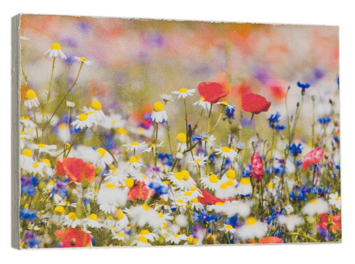Картина Полевые цветы, ромашки, васильки, 14,5 х 22 см0498-15-22