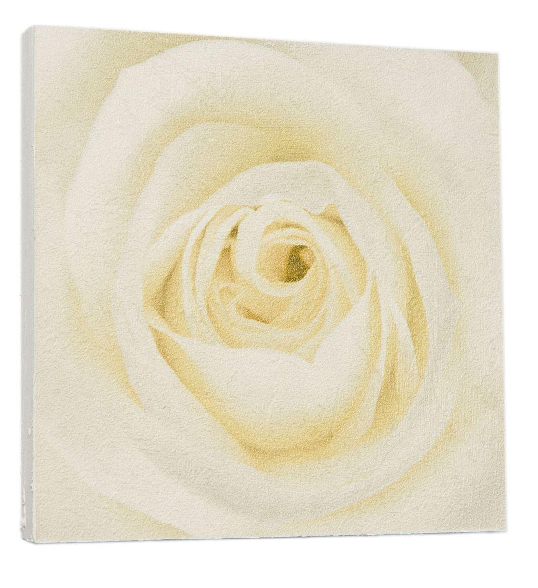 Картина Нежная кремовая роза, 22 х 22 см