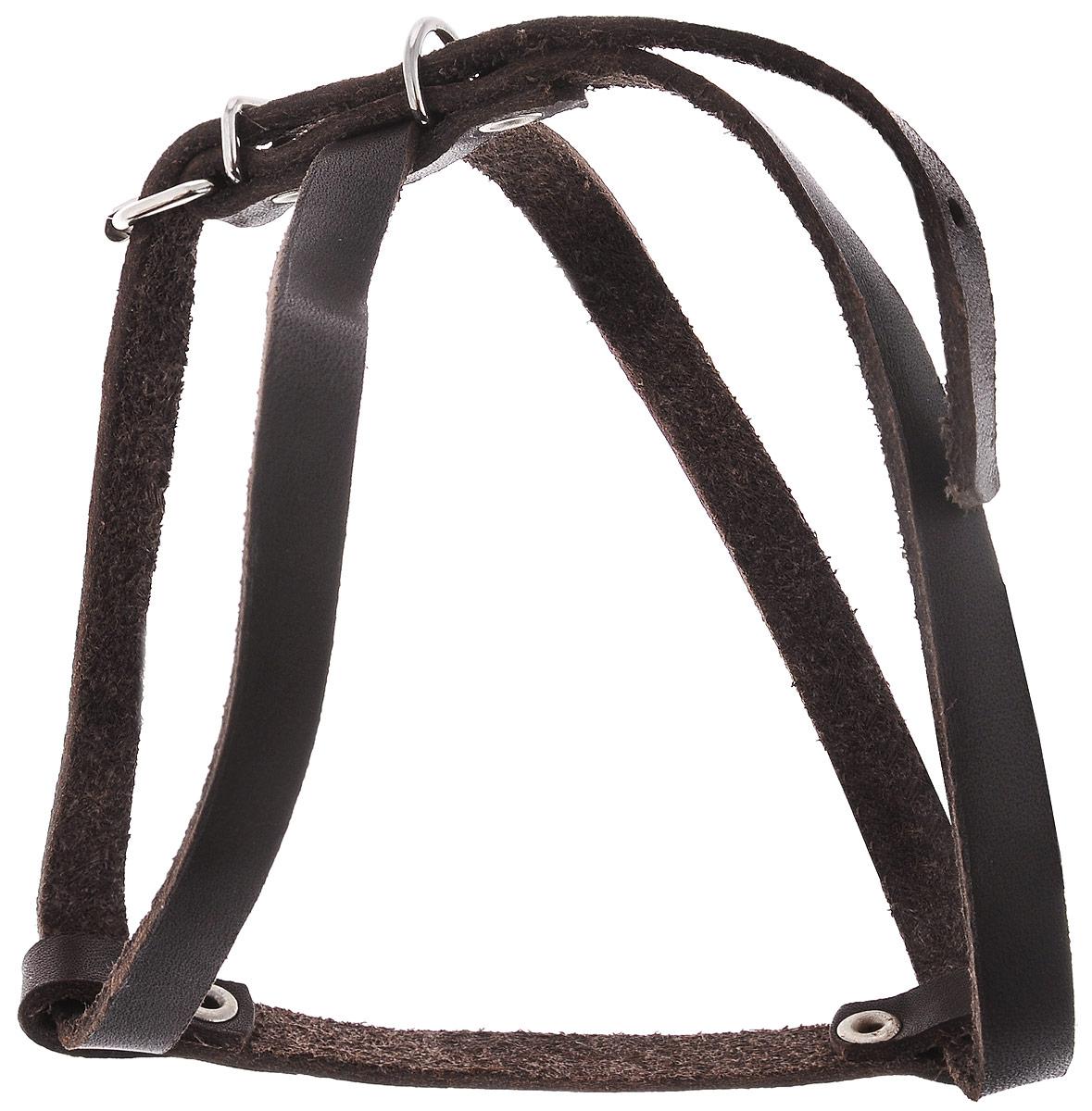 Шлейка для собак и кошек Каскад Восьмерка, ширина 1 см, обхват груди 30-37 см01010201кШлейка Каскад Восьмерка, изготовленная из и натуральной кожи, подходит для собак мелких пород и кошек. Крепкие металлические элементы делают ее надежной и долговечной. Шлейка - это альтернатива ошейнику. Правильно подобранная шлейка не стесняет движения питомца, не натирает кожу, поэтому животное чувствует себя в ней уверенно и комфортно. Изделие отличается высоким качеством, удобством и универсальностью. Размер регулируется при помощи пряжек, зафиксированных в одном из 7 отверстий. Обхват шеи: 24-28 см. Обхват груди: 30-37 см. Ширина шлейки: 1см.