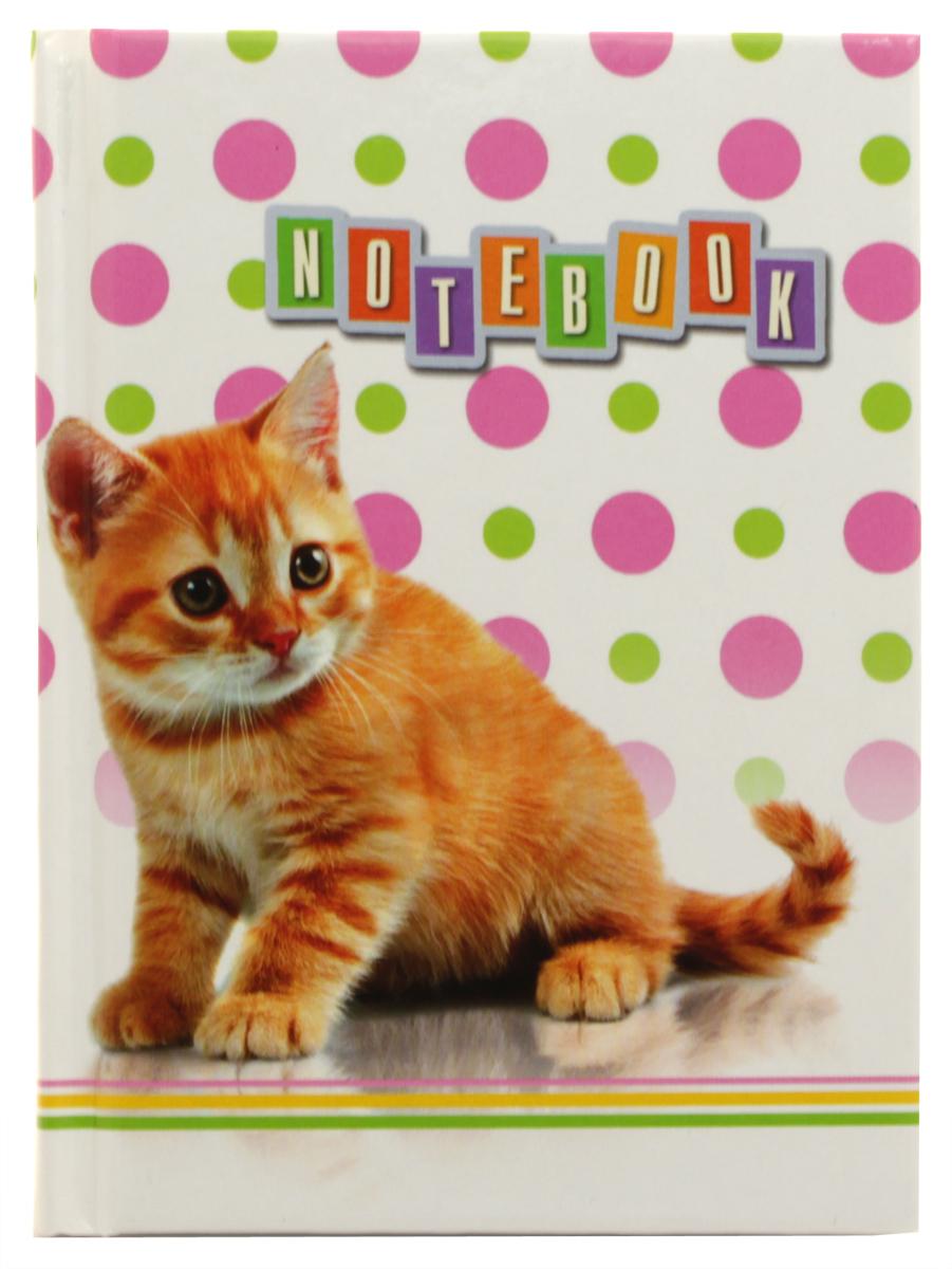 Бриз Блокнот Рыжий котик 64 листа в клетку
