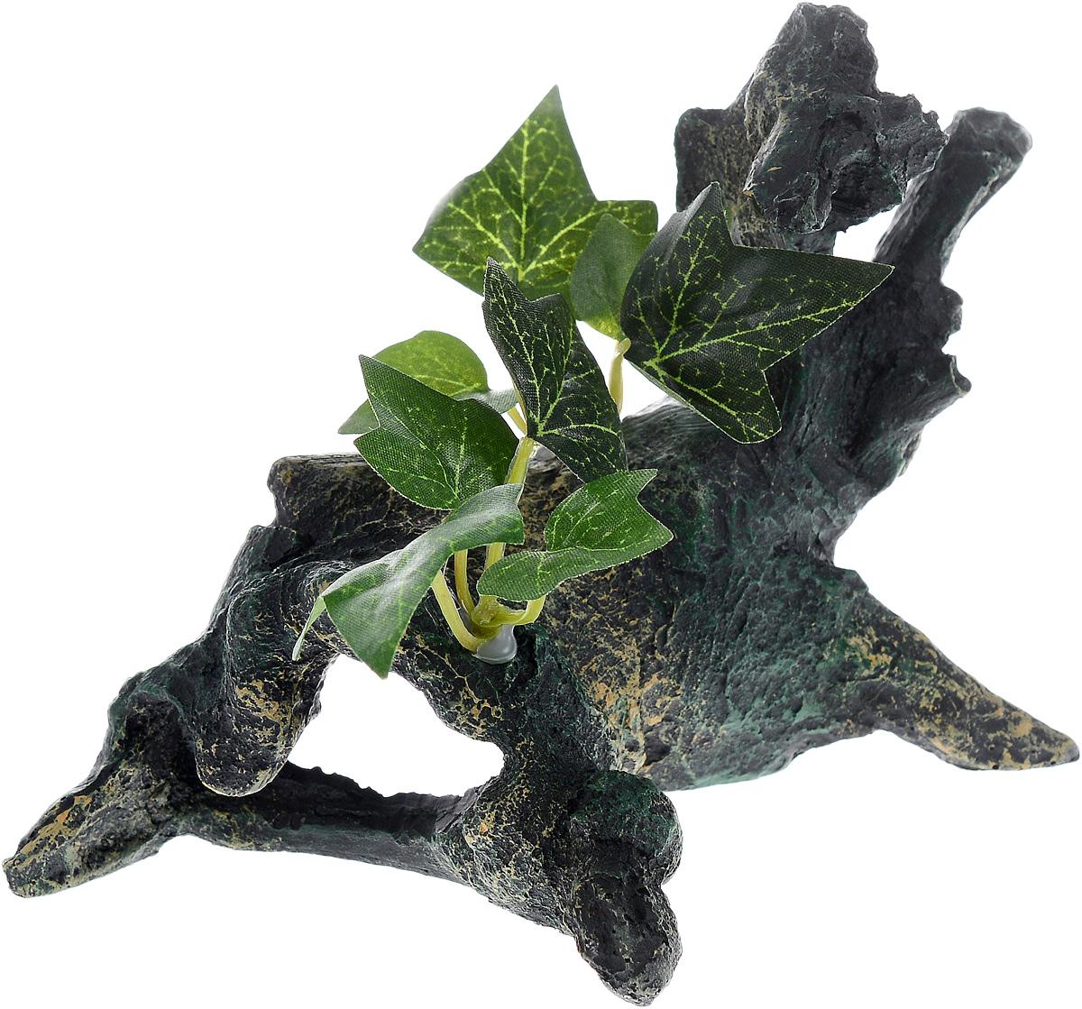 Декорация для аквариума Barbus Коряга с растением, 18 х 10,5 х 13 смDecor 025Декорация для аквариума Barbus Коряга с растением, выполненная из высококачественного нетоксичного полирезина, станет прекрасным украшением вашего аквариума. Изделие отличается реалистичным исполнением с множеством мелких деталей и отверстий. Ведь многие обитатели аквариума используют декорации как укрытия, в которых они живут и размножаются. Декорация абсолютно безопасна, нейтральна к водному балансу, устойчива к истиранию краски, подходит как для пресноводного, так и для морского аквариума. Благодаря декорациям Barbus вы сможете смоделировать потрясающий пейзаж на дне вашего аквариума или террариума.