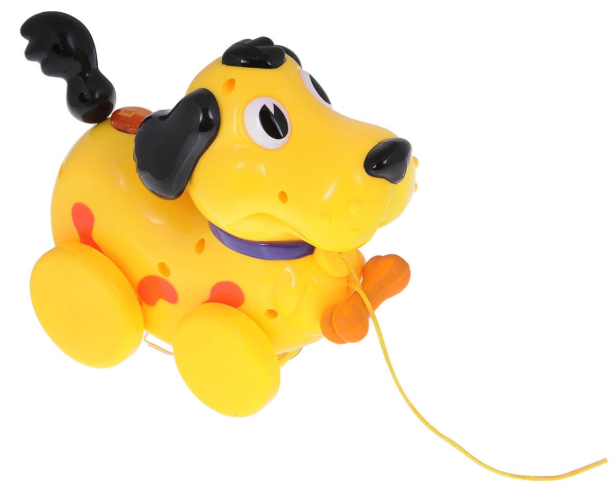 Navystar Музыкальная игрушка-каталка Собачка63977-FМузыкальная игрушка-каталка Navystar Собачка привлечет внимание вашего малыша и не оставит его равнодушным. Игрушка снабжена четырьмя колесиками со свободным ходом. Игрушка выполнена из прочного пластика в виде забавного желтого песика с хвостиком на пружинке. На теле собачки расположена кнопка, при нажатии на которую, воспроизводятся разные мелодии в виде музыкального лая, и мигает яркий огонек. Игрушка воспроизводит 11 различных мелодий. Игрушка дополнена текстильным шнурком, с помощью которого ее можно катать по полу. Музыкальная игрушка-каталка Navystar Собачка поможет малышу развить цветовое и звуковое восприятие, координацию движений и мышление. Для работы игрушки необходимы 2 батарейки типа AА (комплектуется демонстрационными).