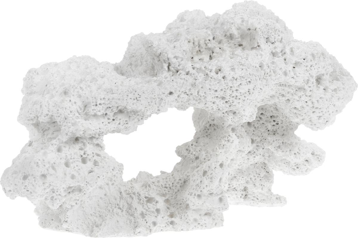 Декорация для аквариума Barbus Камень, 31 х 16,5 х 18 смDecor 164Декорация для аквариума Barbus Камень, выполненная из высококачественного нетоксичного полирезина, станет прекрасным украшением вашего аквариума. Изделие отличается реалистичным исполнением с множеством мелких деталей. Декорация абсолютно безопасна, нейтральна к водному балансу, устойчива к истиранию краски, подходит как для пресноводного, так и для морского аквариума. Благодаря декорациям Barbus вы сможете смоделировать потрясающий пейзаж на дне вашего аквариума или террариума.