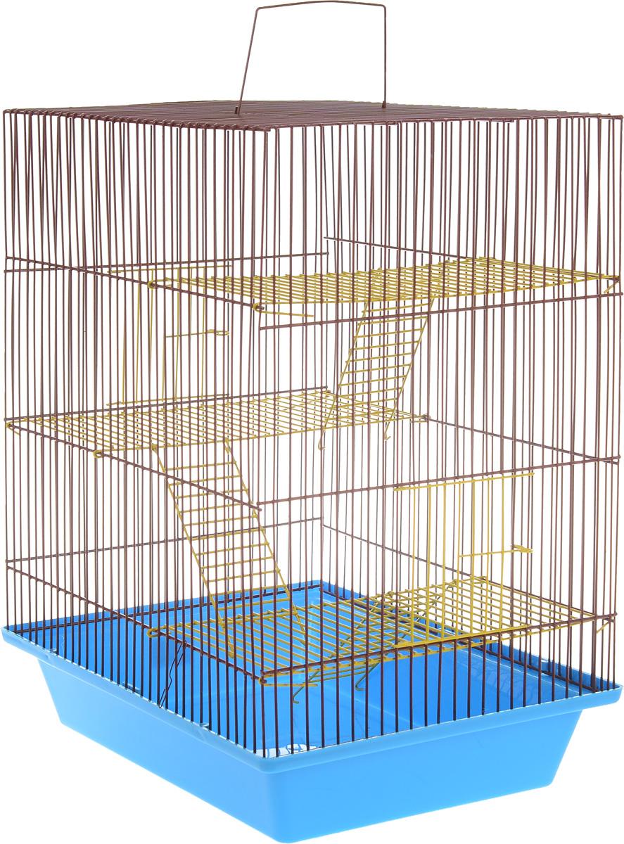 Клетка для грызунов ЗооМарк Гризли, 4-этажная, цвет: синий поддон, коричневая решетка, 41 х 30 х 50 см240_синий, коричневыйКлетка ЗооМарк Гризли, выполненная из полипропилена и металла, подходит для мелких грызунов. Изделие четырехэтажное. Клетка имеет яркий поддон, удобна в использовании и легко чистится. Сверху имеется ручка для переноски. Такая клетка станет уединенным личным пространством и уютным домиком для маленького грызуна.