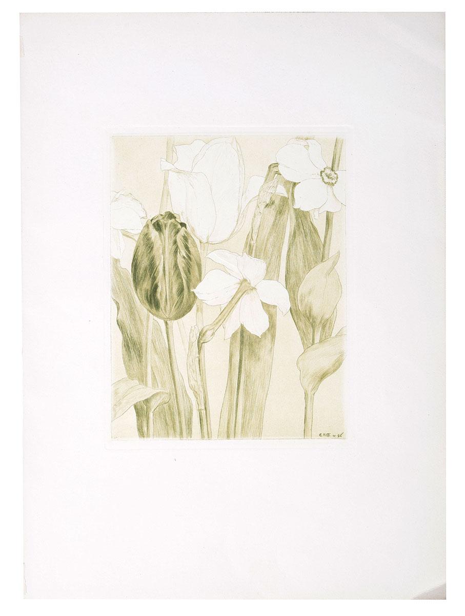 Цветы. Офорт, сухая игла. Западная Европа, 1906 годНВА-2 2508 16-39Офорт начала XX века. Неизвестный художник. Размер изображения: 17 х 13 см. Сохранность хорошая. Офорт с цветочной композицией из тюльпанов и нарциссов выполнен в технике сухой иглы. Сухая игла - техника гравирования на металле, не использующая травление, а основанная на процарапывании острием твёрдой иглы штрихов на поверхности металлической доски. Полученная доска с изображением представляет собой форму глубокой печати. Отличительной особенностью оттисков с гравированной таким образом формы является «мягкость» штриха: используемые гравером иглы оставляют на металле углублённые борозды с поднятыми заусенцами - барбами. Штрихи также имеют тонкое начало и окончание, поскольку процарапаны острой иглой. Не подлежит вывозу за пределы Российской Федерации.