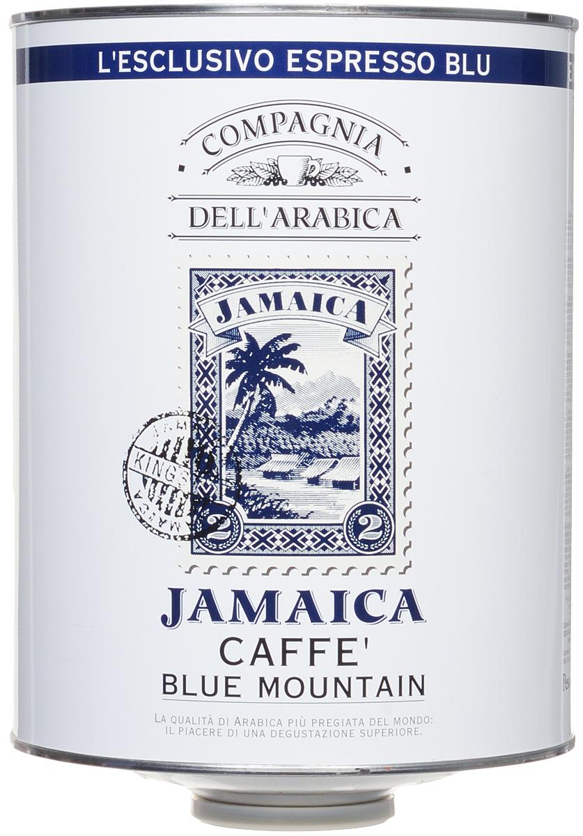 Compagnia DellArabica Jamaica Blue Mountain кофе в зернах, 1,5 кг8001684025916Jamaica Blue Mountain по праву считается одним из самых элитных сортов 100% арабики. Жемчужина кофейной коллекции Compagnia DellArabica. Нотки карибского рома, аромат драгоценной ванили, полутона миндаля и какао, а так же деликатный намек на бархатный аромат дорогого табака. Вулканические земли района Blue Mountain доступны для плантаций в крайне ограниченном количестве, поэтому данный сорт ценится производителями на вес золота. Показателем бережного отношения к урожаю служит тот факт, что это единственный кофе, который транспортируется не в мешках, а в дубовых бочках – как вино.