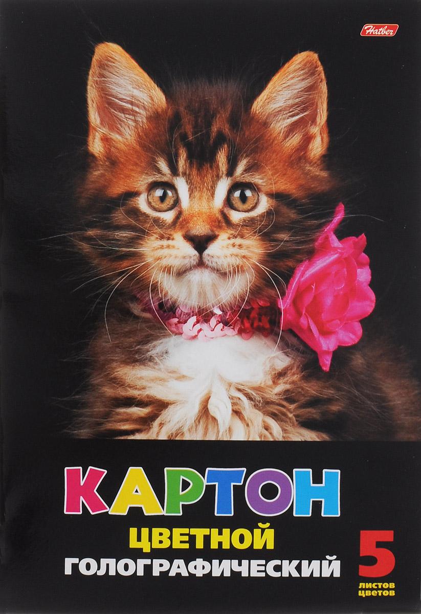 Hatber Набор цветного голографического картона Пушистый котенок 5 листов 5Кц4гф_08052