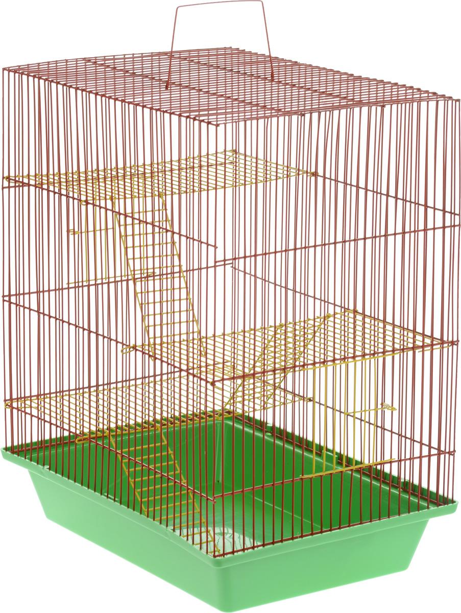 Клетка для грызунов ЗооМарк Гризли, 4-этажная, цвет: зеленый поддон, красная решетка, 41 х 30 х 50 см. 240ж240ж_зеленый/красныйКлетка ЗооМарк Гризли, выполненная из полипропилена и металла, подходит для мелких грызунов. Изделие четырехэтажное. Клетка имеет яркий поддон, удобна в использовании и легко чистится. Сверху имеется ручка для переноски. Такая клетка станет уединенным личным пространством и уютным домиком для маленького грызуна. Размер клетки: 41 см х 30 см х 50 см.