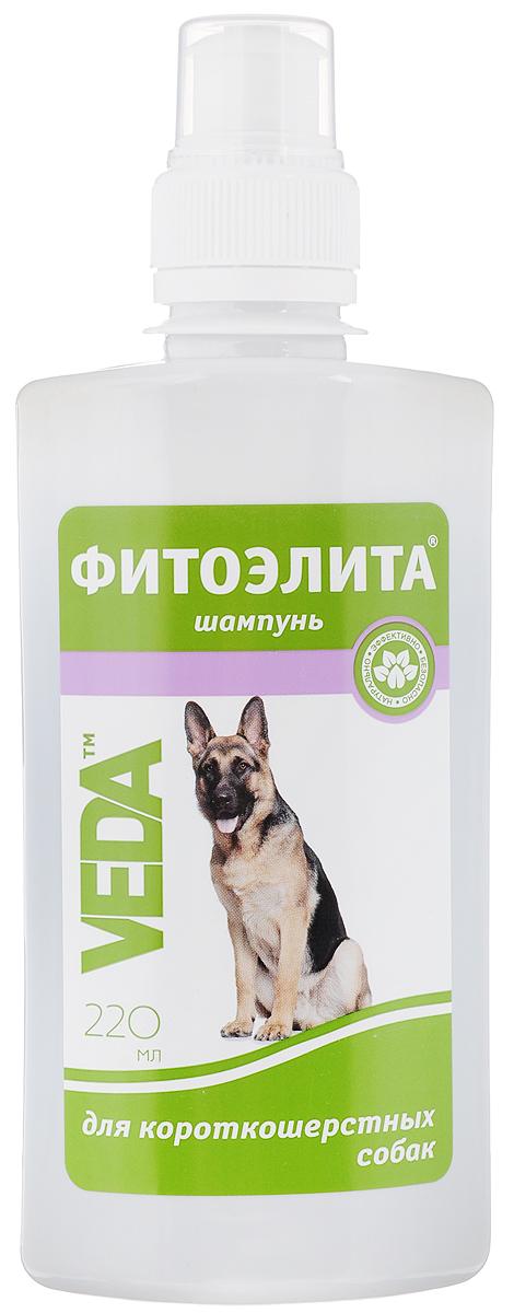 Шампунь для короткошерстных собак VEDA Фитоэлита, 220 мл4605543006036Шампунь VEDA Фитоэлита - это эффективное средство гигиены для домашних животных на основе листьев крапивы. Формула этого шампуня разработана с учетом структуры шерсти собак короткошерстных пород, что позволяет добиться прекрасных результатов при регулярном использовании. Товар сертифицирован.