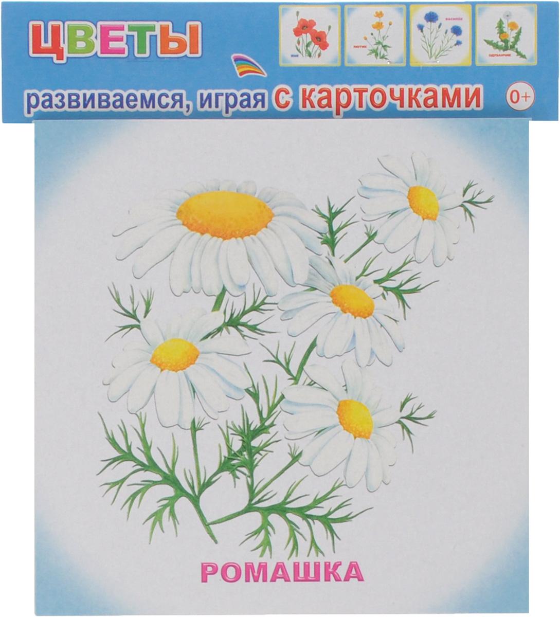 Алфея Обучающие карточки Цветы